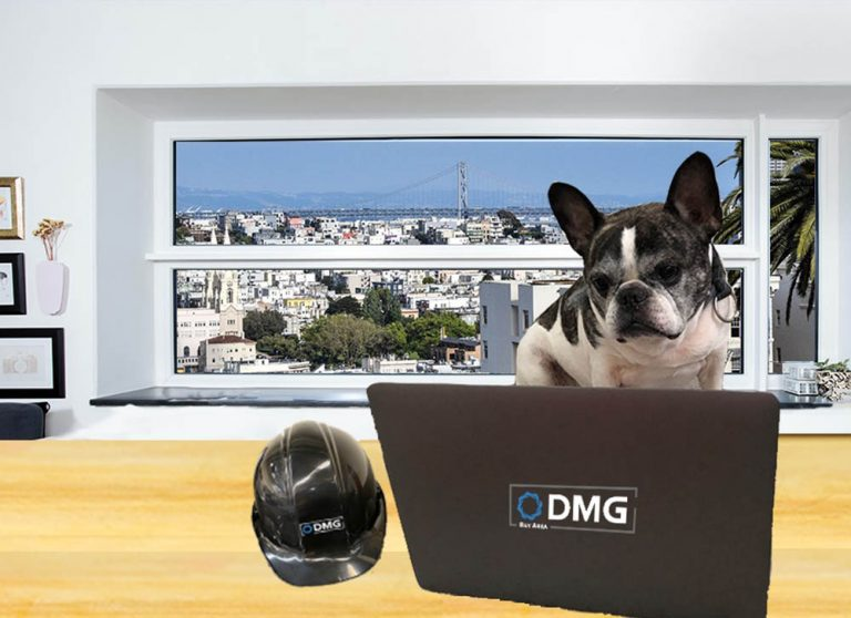 DMGN virtual training schedule